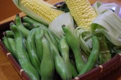そら豆、玉蜀黍 004